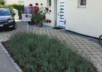 Rabattenbepflanzung   Hägglingen, 2021